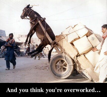 Overworked?